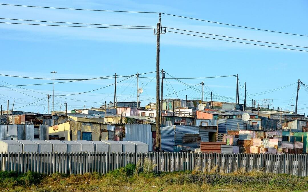 Township Winery: why growing vines in Cape Town's slums makes sense